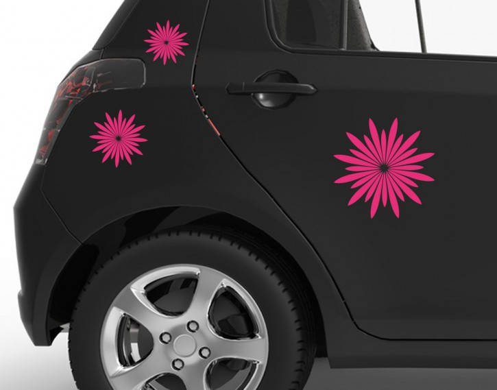 Autoaufkleber Strahlenblüten