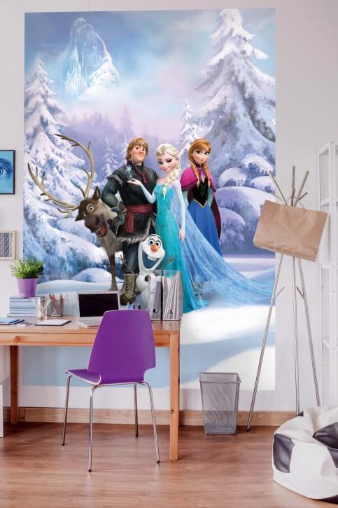 Fototapete Frozen Winter Land