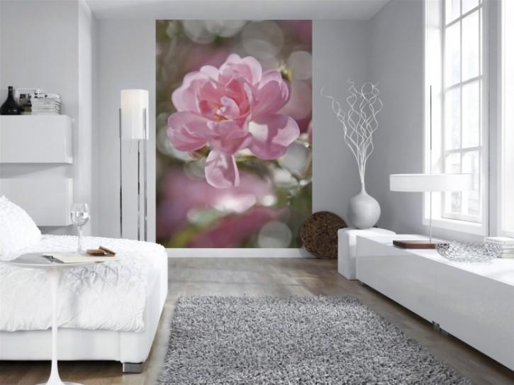 Fototapete Bouquet