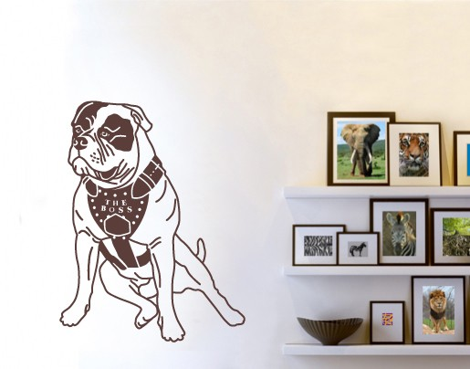 Wandtattoo Amerikanische Bulldogge mit Geschirr