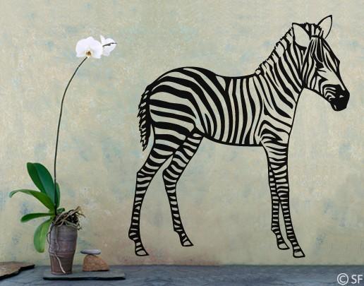 Wandtattoo Zebrafohlen