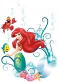 Wandsticker Disneys Arielle die Meerjungfrau
