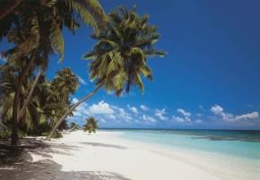 Fototapete Malediven