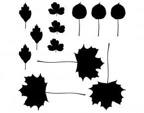 Autoaufkleber Herbstblätter