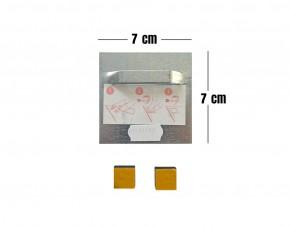 Alu-Dibond Wandbild Peperoni quadratisch