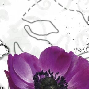 Fototapete Purple