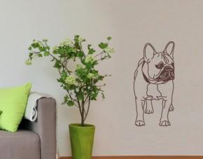 Wandtattoo Französische Bulldogge